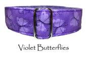 Violet Butterflies Dog Collar