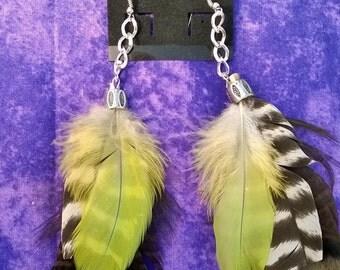 fun feather earings