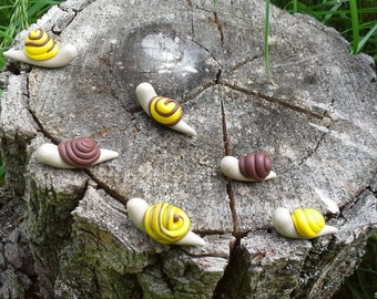 Snails for fairy garden or terrarium