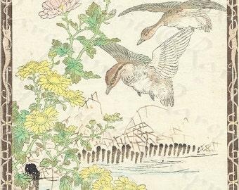 KONO BAIREI Japanese woodblock ukiyoe print -Kacho Gafu Birds and Flowers - Original