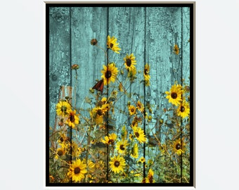 Rustic Wall Art Photography/Sunflowers/Yellow Blue/Weathered/Floral Bedroom Home Decor Matted Picture