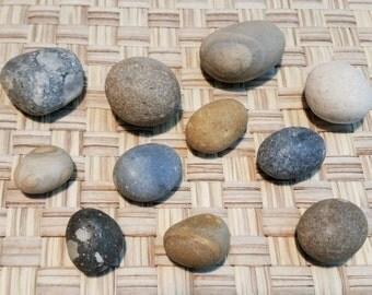 NEPTUNE * Zen Garden Pebble Set