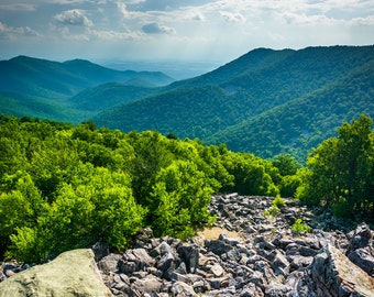 The Blue Ridge Mountains from Blackrock Summit, Shenandoah National Park, Virginia - Landscape Photography Fine Art Print or Wrapped Canvas