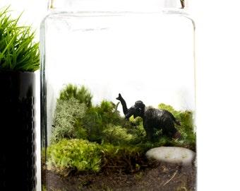 Moss Terrarium // Wooly Mammoth