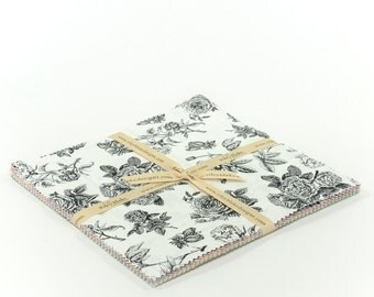 10 inch Squares Layer Cake (20) Sew Charming by Bo Bunny For Riley Blake