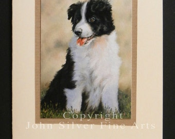 Border Collie Dog Portrait Hand Made Greetings Card. From Original Paintings by JOHN SILVER. GCBC005