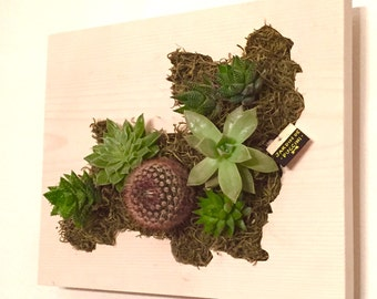Valentine's Day Gift || CUSTOM COLOR: Yorkie Yorkshire Terrier Succulent + Cactus Vertical Garden / Living Wall / Wall Planter
