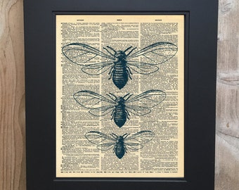 Entomology art print on Upcycled vintage Dictionary page #0072
