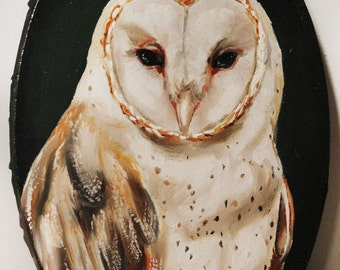 Original barn owl painting oval canvas