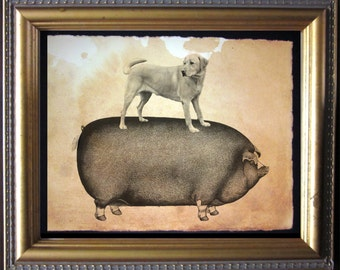 Labrador Retriever Yellow Lab Riding Pig - Vintage Collage Art Print on Tea Stained Paper - Vintage Art Print