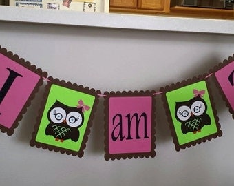 Birthday banner -I am (age) with owls (can do any themes)