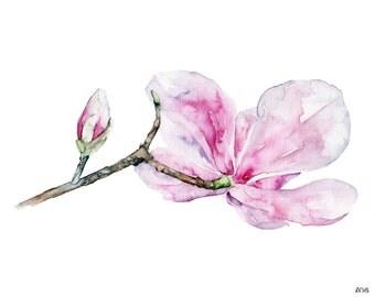 "Magnolia Painting - Print from Original Watercolor Painting, ""Magnolia 2"", Pink Magnolia, Botanical, Watercolor Flowers"