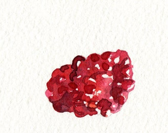 ORIGINAL Watercolour Three Raspberries Painting