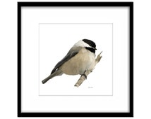 Printable Bird Art, Willow Tit Instant Download,  Wild Bird Painting, Country Garden Art