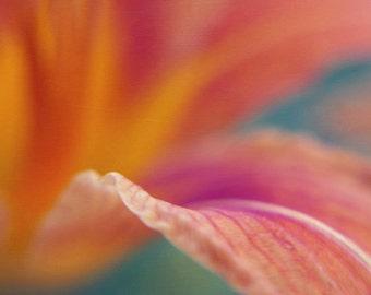 Floral abstract photography, modern wall art, burnt orange flower artwork, macro photography, lily art print, teal purple yellow decor