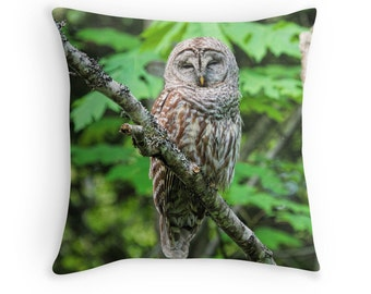 Owl Decor, Owl Cushion, Owl Throw Pillow, Barred Owl, Bird Cushion, Bird Pillow, Owl Pillow, Wildlife Cushion, Nature Cushion, Owl Photo
