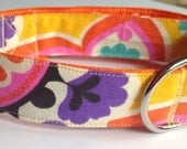 Orange Colorful Dog and Cat Collar With Two Toned Design for Summer