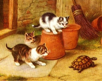 J Salmon Cats/Kittens with Tortoise 1920s Signed E Hunt Postcard