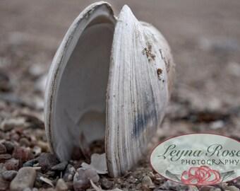 NJ Beach Photography - Matted 5X7 Fine Art Print