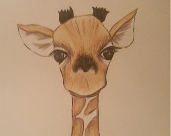 Baby Giraffe Winston  Illustration Art