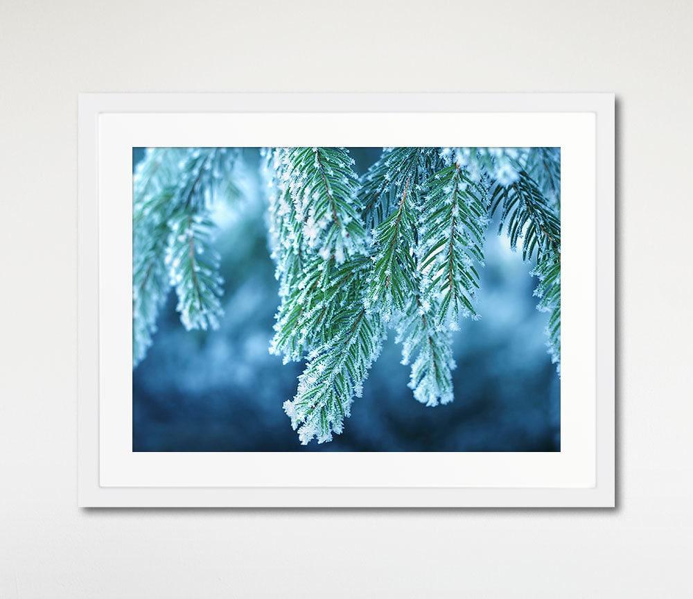 Blue winter spruce art print framed blue wall art by for Blue wall art
