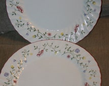 Old English Johnson Brothers England, China, Summer Chintz Pattern, Blooming Flowers, 2 Piece Collection, Nice, Swirling Edging, Pink Rim