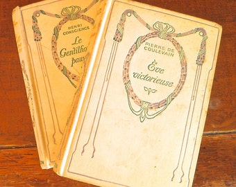 A pair of vintage french novels