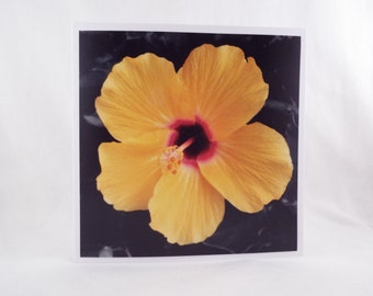 Splash of Colour: Hibiscus (Square Blank General Use Card)