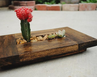 Mini Zen Garden Planter
