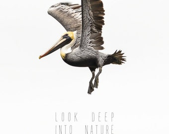Nature Lover, Quote Posters, Inspirational Art, Typography Art, Quote Art, Nature Photography, Art Print, Pelican, Look Deep into Nature