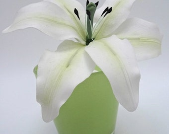 Sugar White Lily