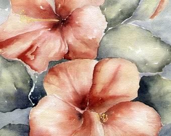 Watercolor Art Print, Hibiscus Art Print,  Peach Hibisicus Print