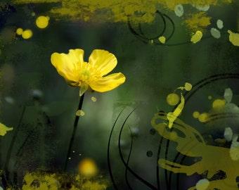 Photography Buttercup, nature photo, pistachio and lemon shades, Fine Art Print, nursery decor, Shabby Chic, Floral