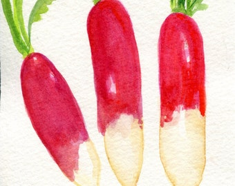 French breakfast radishes watercolor painting original, Vegetable art,  Modern Minimalist original watercolor painting of radishes