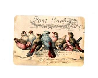 Bird Note Cards , Vintage Birds Stationery , Blank Cards , Birds Flat Cards , Stationery Set , Set of Four Cards