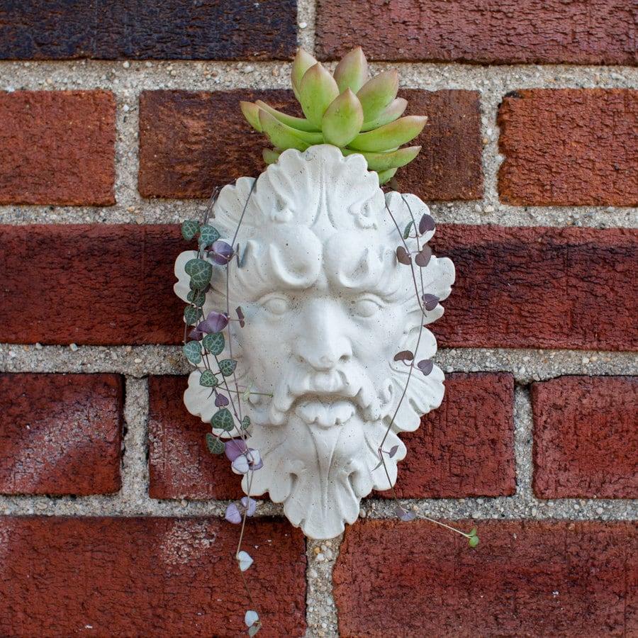 face wall planter garden head planter leaf man face design. Black Bedroom Furniture Sets. Home Design Ideas