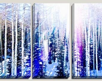 As Seen In Tatler Magazine, Giclee, Winter Photography, 3 Panel Canvas Art, Birch Trees, Pine Trees, Snow, Utah,, Boys Decor, Ready to Hang
