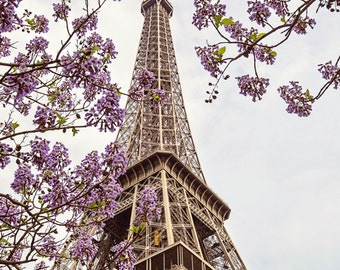 Paris Photography, Eiffel Tower Photograph, Eiffel Tower Print, Paris Blossoms, Paris Decor Gift for Her, Travel Photography, Printemps