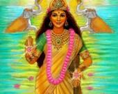 Hindu Goddess LAKSHMI Spiritual Art meditation India elephants matted print of painting by Sue Halstenberg