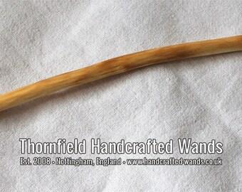 Horse Chestnut Wand 14 (308 mm)