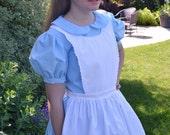 Adult Alice in Wonderland Costume Dress, Woman's