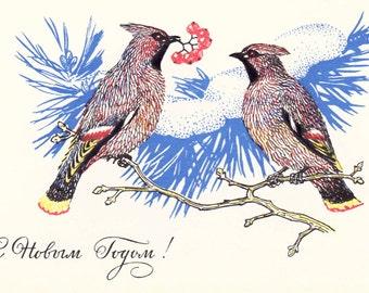 New Year's Postcard by V. Kolganov -- 1969, USSR Ministry of Communication Publ.