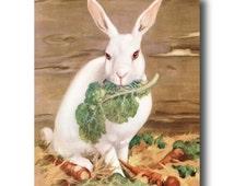 "Rabbit Art Print, White Rabbit Nursery ""Snow Queen"" (Farm Decor, Farmhouse Decor, Farm Nursery Decor) Animal Nursery Art, Animal Portrait"
