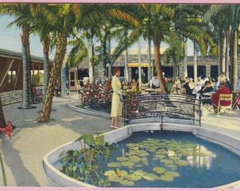 "Ca. 1950's ""Palm Garden Restaurant"" Largo, FL Topographical Picture Postcard - 1544"