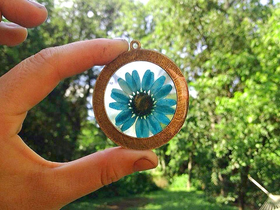 Blue Chrysanthemum Flower Preserved in Clear Resin, Enclosed in Large Bronze Round Pendant with bronze chain. Nature Inspired Necklace.