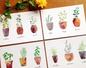 Set of 4 Watercolor Fresh Herbs Cards - Potted Kitchen Herbs, A6 postcards - Recipe cards, Kitchen wall art, Note cards, Postcards