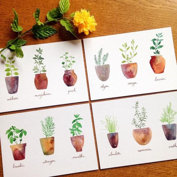 Cartes postales aquarelles herbes aromatiques ensemble de 4 - Herbes aromatiques cuisine liste ...