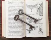 vintage skeleton keys • large steel skeleton key pair • long door keys