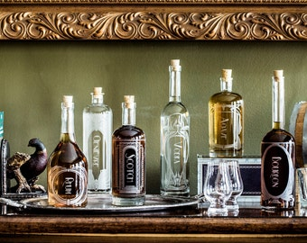 The Variance Set of 6 - Etched Glass Spirit Decanters accessories for your home bar, liquor cabinet,bar cart, or gift for a booze enthusiast