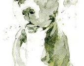 Camo Pit Bull, Staffordshire Terrier, Staffie, watercolor painting, dog art